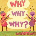 The Pop Ups Ants Ants Ants: Why Why Why?